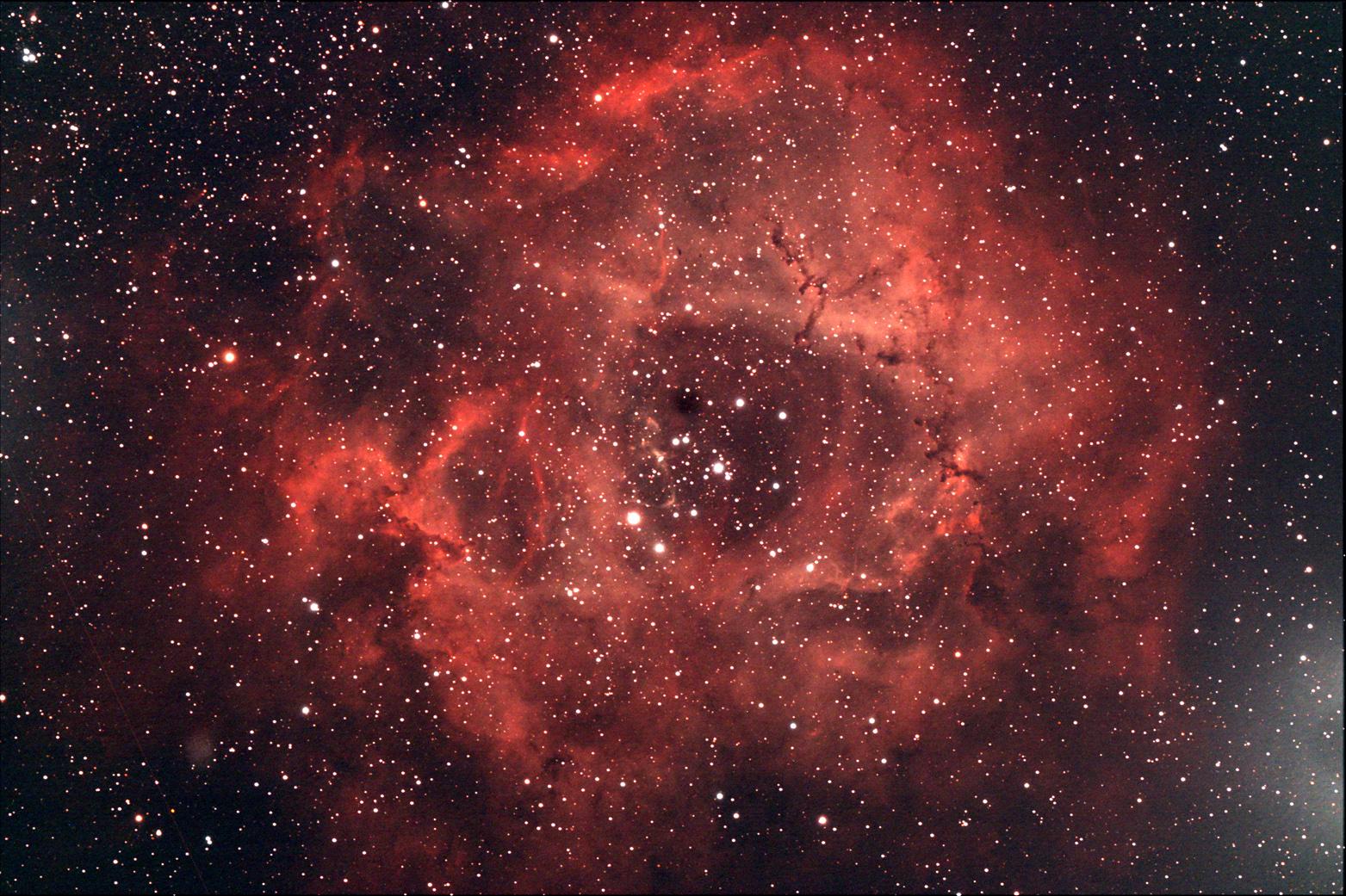 NGC 2244 - Nébuleuse de la Rosette
