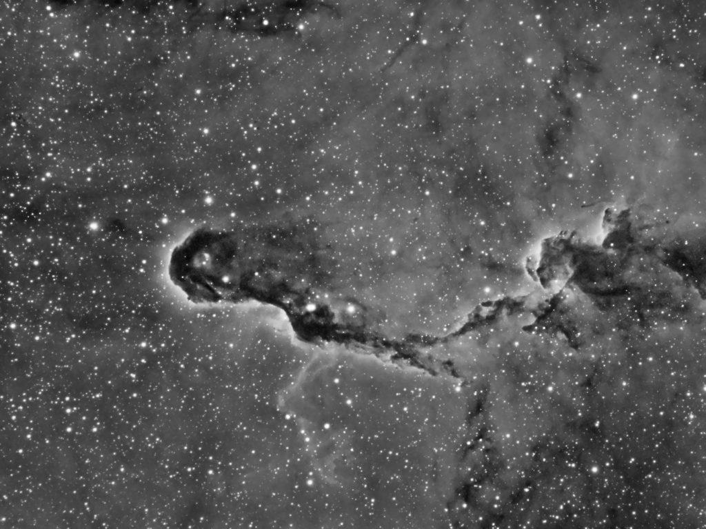 Nébuleuse de la Trompe d'éléphant - IC1396